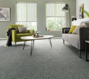 Grey carpet - living room - Essentials Cloud Burst