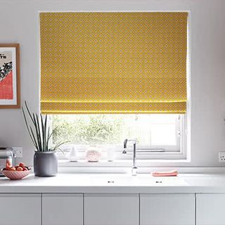 Roman Blind Eclipse Mimosa