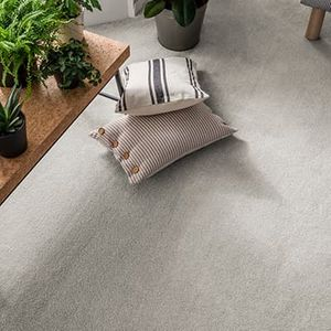 Grey-carpet-living-room-allure-extravagance-oatmeal