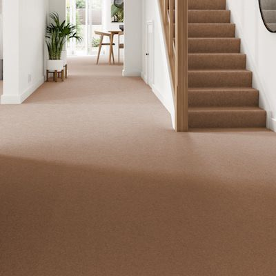 Brown-orange-carpet-hallway-stairs-belgravia-twist-cedar