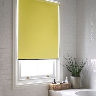 Acacia Chartreuse roller blind