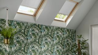 Room with tropical plant wall paper and two Skylights fitted with Acacia Silver roller blinds