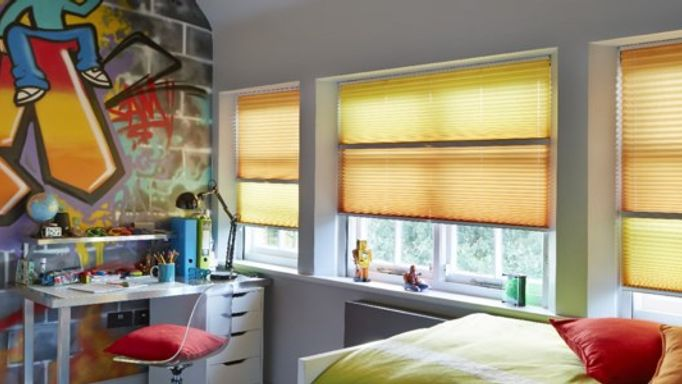 Day and night bedroom pleated blinds