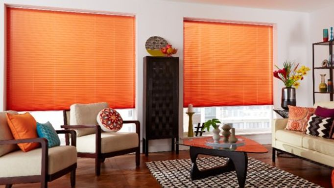 crush spice pleated blind in the living room