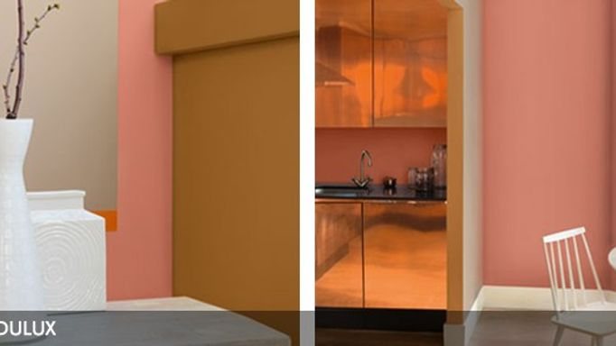dulux walls copper orange