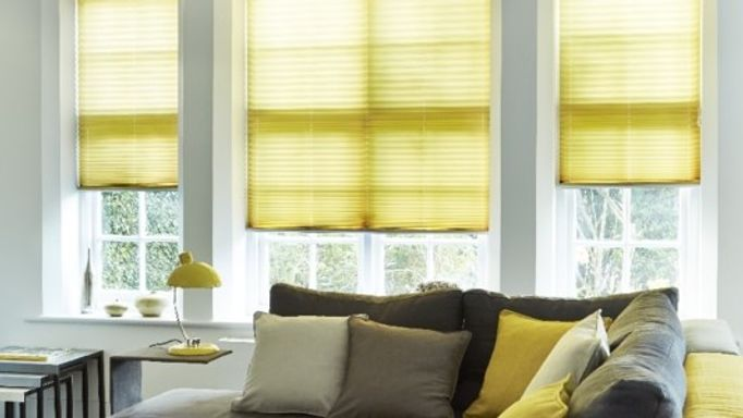 Grenoble-Citrus-Pleated-blind