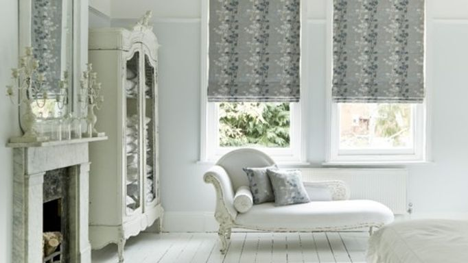Stylish Silver Roman blind