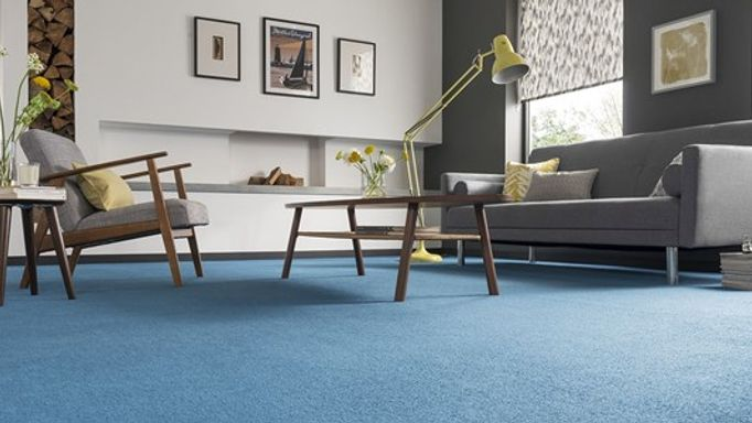 Deep blue living room carpet