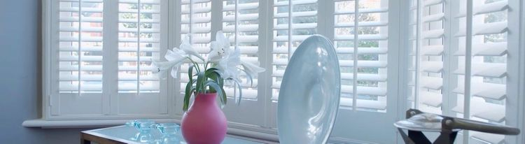 white-shutter---living-room---haywood-purity2.jpg