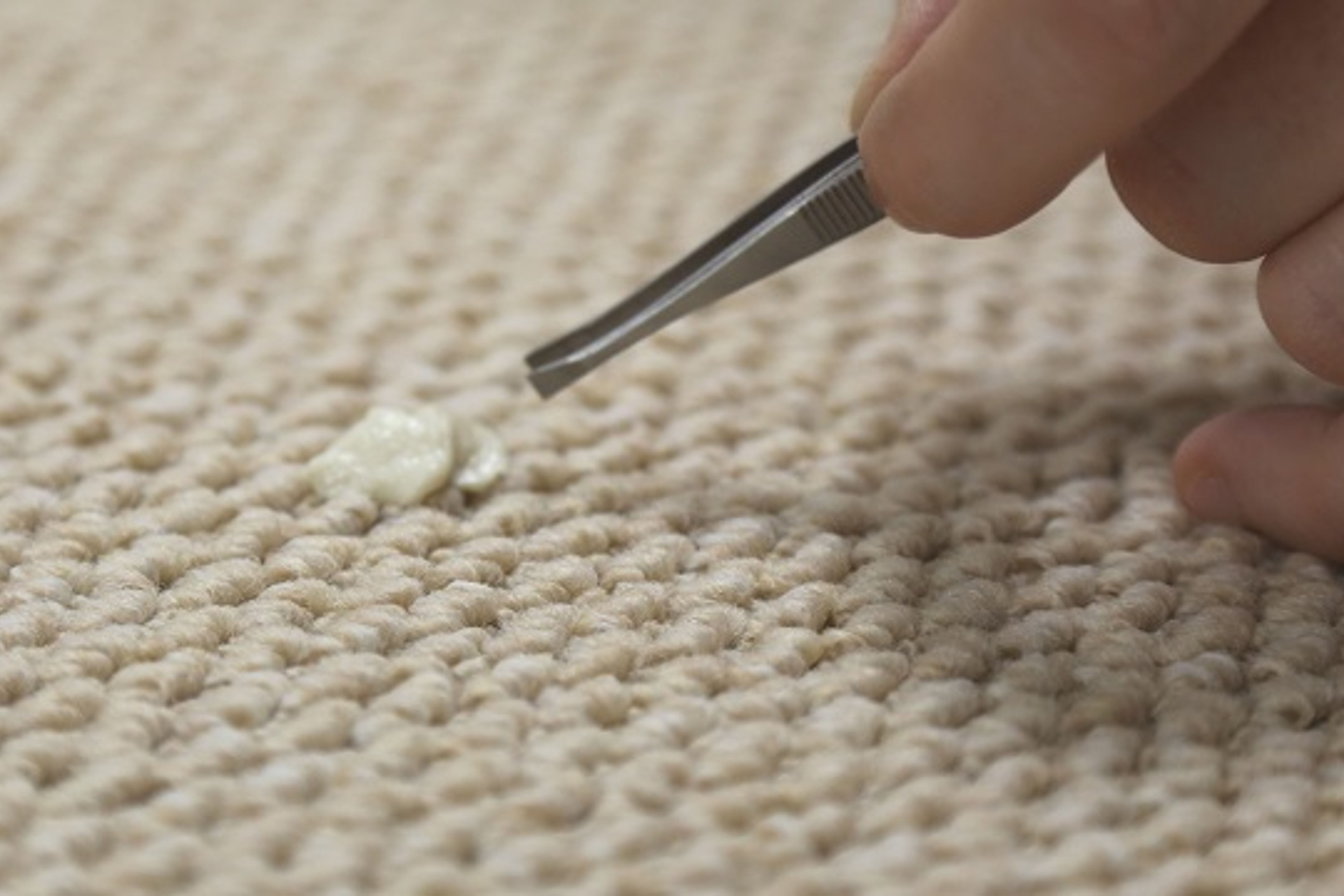 carpet-guides-and-advice-removing-chewing-gum-with-tweezers -