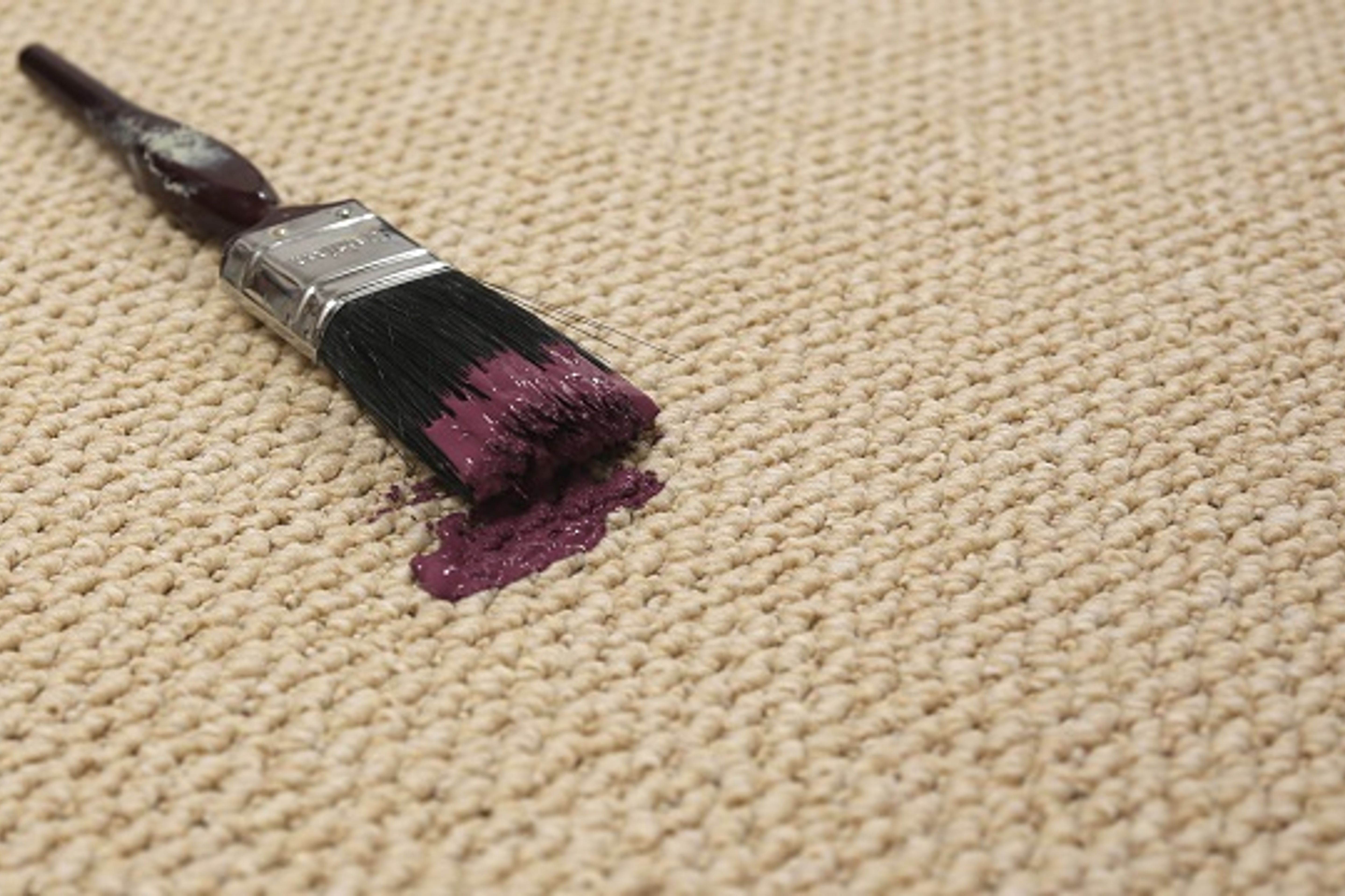 how to get wet paint out of carpet