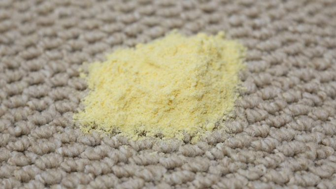 carpet-guides-and-advice-polenta