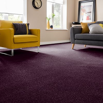 Purple-carpet-living-room-Montrose-Purple
