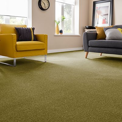 Green-carpet-living-room-Montrose-Reseda