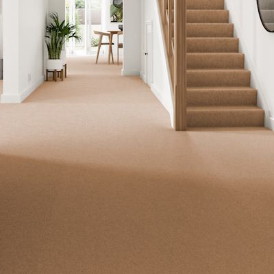 Brown-orange-carpet-hallway-stairs-belgravia-twist-chestnut