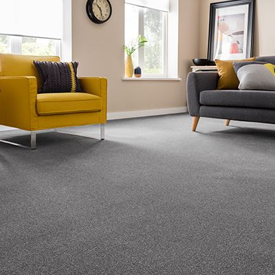 Montrose Silver Carpet