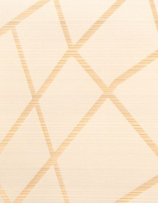 A close-up shot of the Zimmer Gold fabric