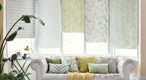 Petula Olive, Tropical Garden Green and Greenery Tropical roller blinds in window