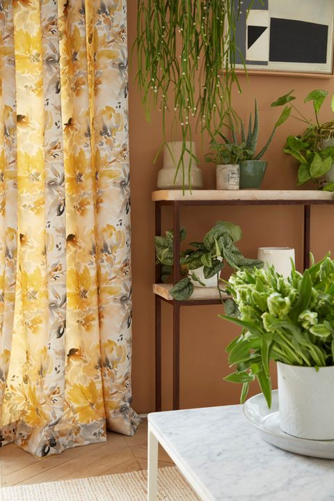 Caramel curtains with repeating floral patterns in a room decorated with brown walls and numerous potted plants
