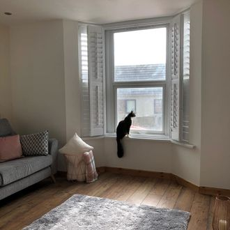 Windows in living room dressed with tier or tier shutters. A cat is sitting in window and a grey sofa have been placed in the room.