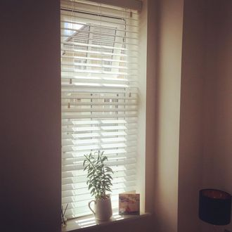 Corner view of room with white wooden venetian blinds hanging on window