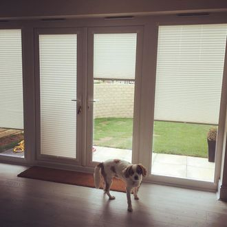 Perfect fit blinds hanging on the bifold doors