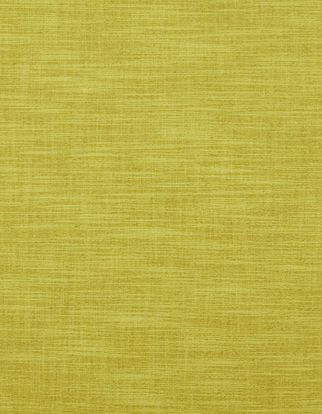 Plain citrine fabric swatch in living etc range
