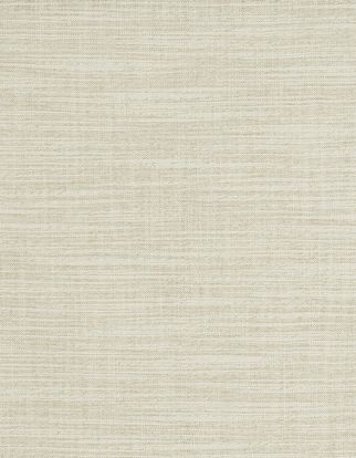 Cream plain fabric swatch in living etc range