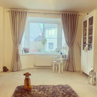 Living room shot front on of bay window with dog looking outside the window- window featuring wooden ventian blinds and creme curtains with tiebacks