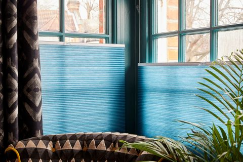 Blue pleated blinds are paired with gasoline styled curtains on a rectangular window in a room decorated in blue and with fern plants