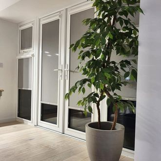 Grey Perfect Fit roller blinds in French doors behind plant