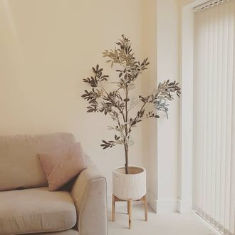 White vertical blinds in minimal, neutral decor with tree in white plant pot