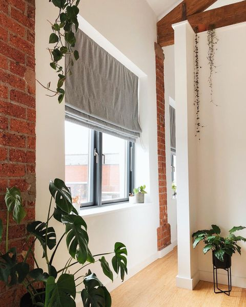Grey Roman blinds in white room with exposed brick and beams and plants