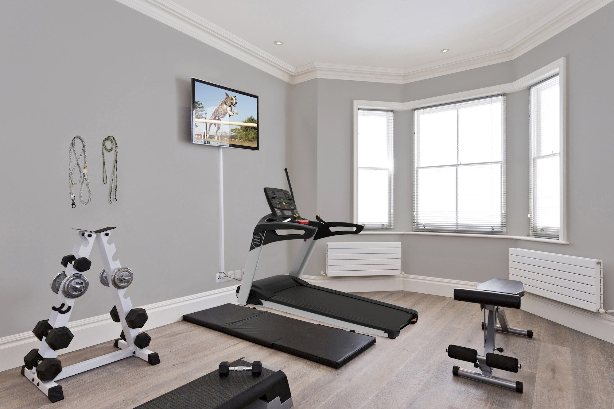A home gym decorated in the style of a greyhound