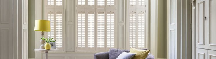 windsor-white-shutters