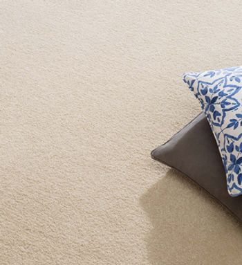 cream carpet-living room-spectrum wheat-#577eb7.jpg
