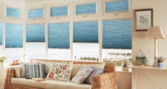 ThermaShade Pleated blinds -