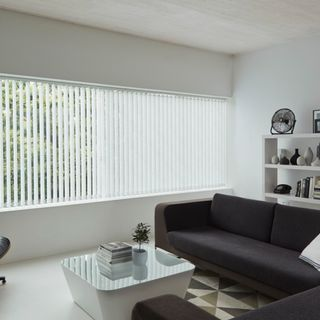 White vertical blinds in the living room - Alba Jet Vertical blinds