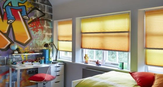 Day and night bedroom pleated blinds -