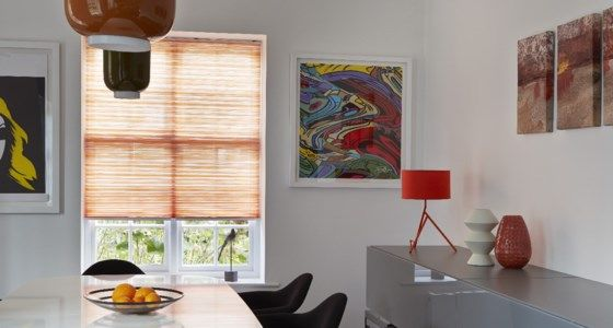 Pumkin Coloured Pleated Blinds in Dining Room -