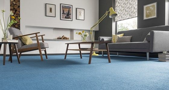 Deep blue living room carpet -